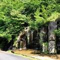 Photos: 林道の滝