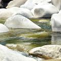 Photos: 木曽川 初夏のひととき