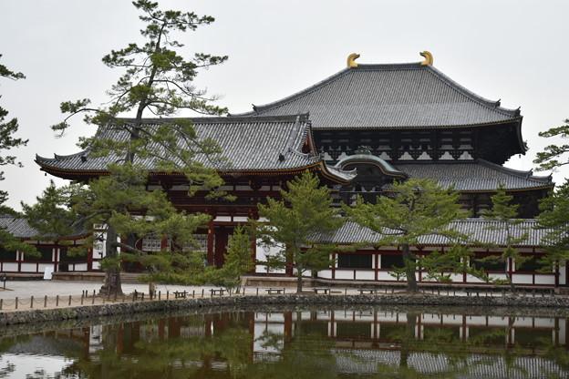 東大寺中門・大仏殿