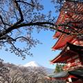写真: 忠霊塔と富士1