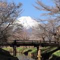 写真: 忍野春景1