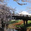 写真: 忍野春景2
