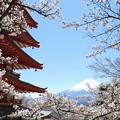 忠霊塔と富士1