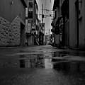 写真: 「雨音」
