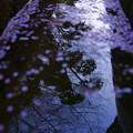 Photos: 「心の鏡」