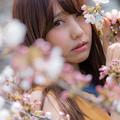 写真: あの日の桜。