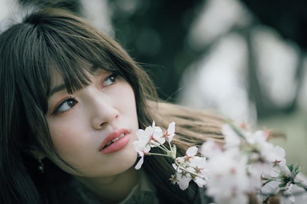 Photos: 君の中に、僕の中に桜。