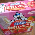 写真: 丸永製菓*冬季限定・白くま練乳いちご1