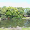 東京国立博物館*春の庭園開放3