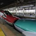 Photos: 大宮駅*新幹線・はやぶさとこまちの連結