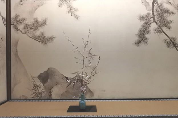 東京国立博物館*応挙館・床の間