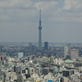 Photos: マンダリンオリエンタル東京・38Fオリエンタルラウンジからの眺め3