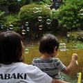 Photos: シャボン玉 遊び