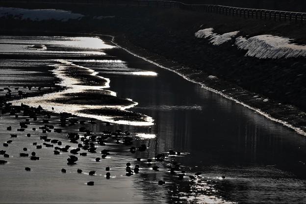 写真: 氷   紋