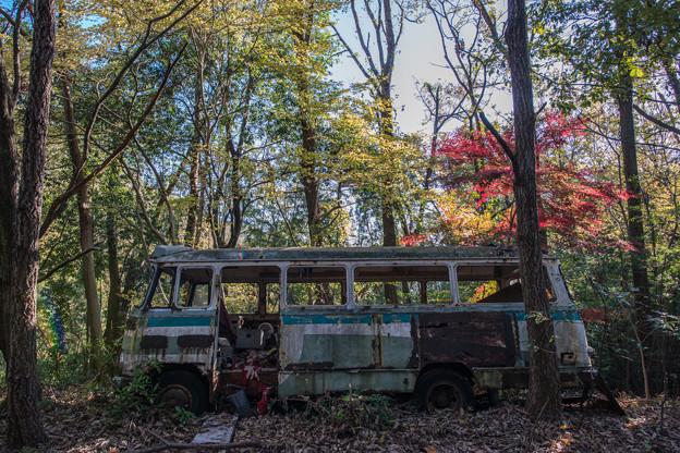 廃バスと紅葉