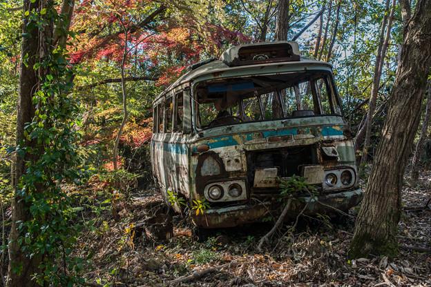 廃バスと紅葉2