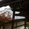 Photos: 紅葉と鐘楼@大聖院