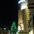 広島PARCOとクリスマスツリー