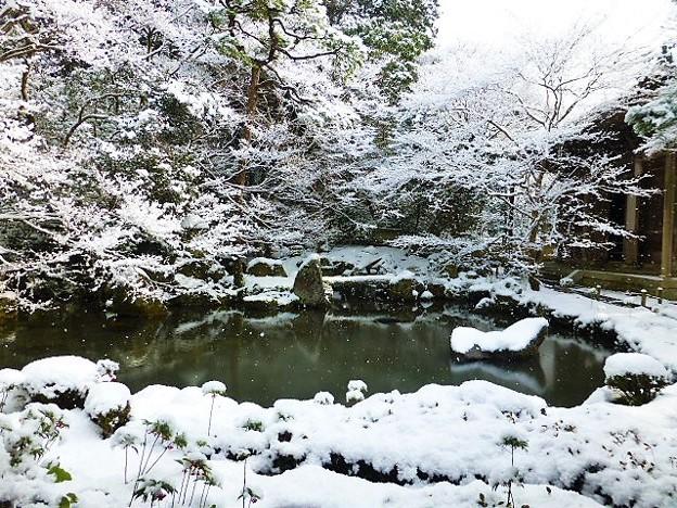 池泉鑑賞式庭園