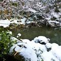 積雪のつくばい