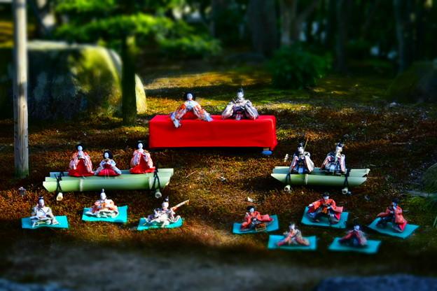 写真: お庭に飾られたおひな様(曲水の宴)