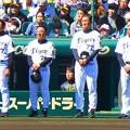 Photos: 阪神首脳陣