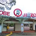 Photos: 神戸市立王子動物園