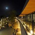 写真: JO-TERRACE OSAKAからの眺め