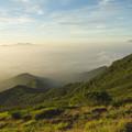 Photos: 雲海に浮かぶ