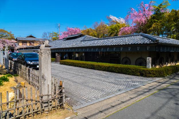 2018 03 湯豆腐の嵯峨野_037
