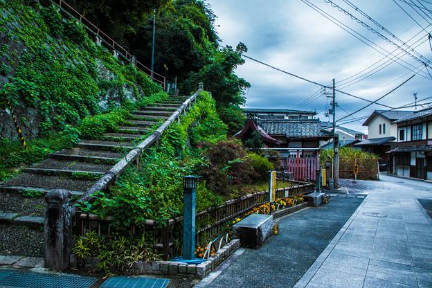 Photos: 石清水八幡宮_045
