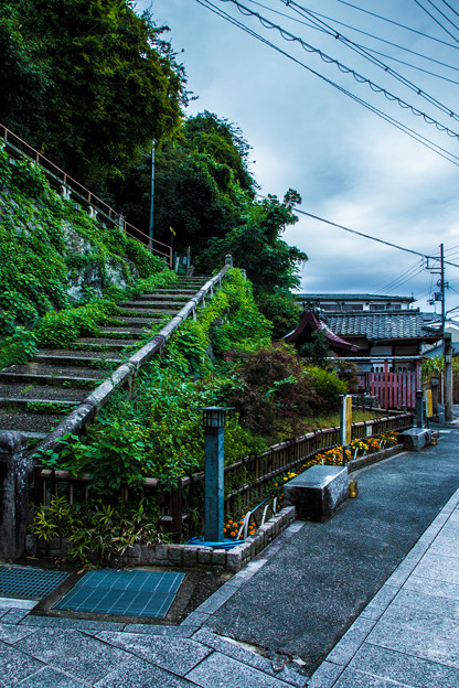 石清水八幡宮_046