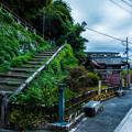 Photos: 石清水八幡宮_046