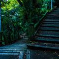 Photos: 石清水八幡宮_061