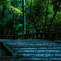 Photos: 石清水八幡宮_066