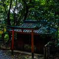 Photos: 石清水八幡宮_069