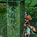 Photos: 石清水八幡宮_073