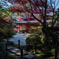 Photos: 南禅寺天授庵_058