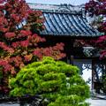 Photos: 南禅寺天授庵_160