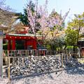Photos: 2018 03 車折神社_018