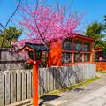 Photos: 2018 03 車折神社_053