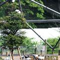 Photos: 多摩動物園220