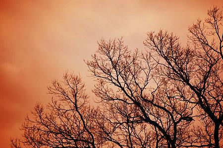 満天の夕空