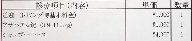 2018/02/24(土)・本日の診察料金