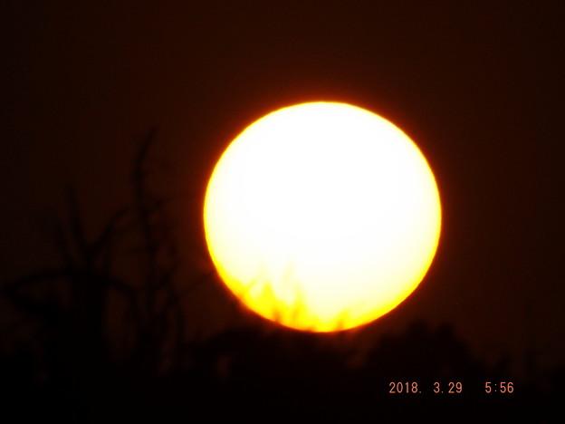 2018/03/29(木)の朝陽