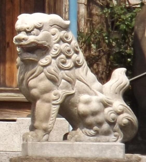 2018/04/02(月)・天祖神社・貴乃花部屋の近所(狛犬様・右)