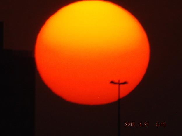 2018/04/21(土)の朝陽・3