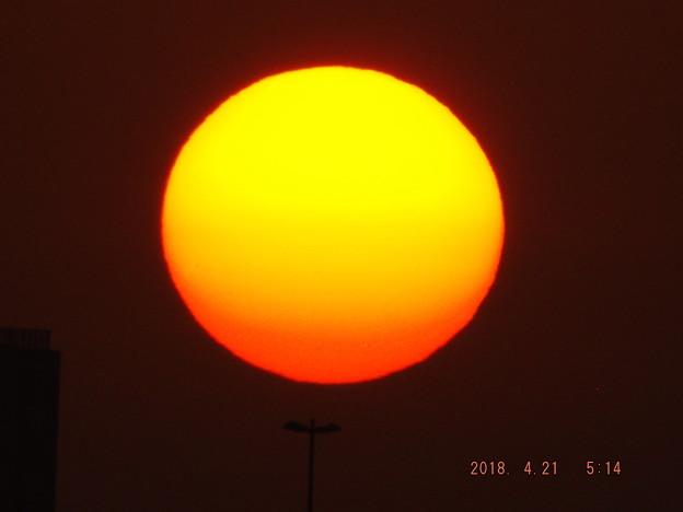 2018/04/21(土)の朝陽・5