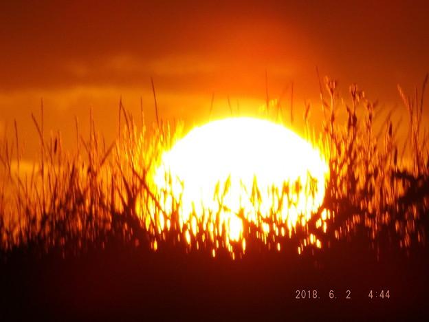2018/06/02(土)の朝陽