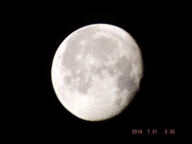 2018/07/31(火)のお月様